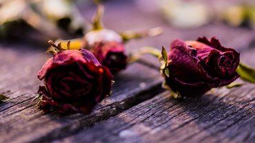 Cœur brisé : comment ne pas devenir amer suite à des ruptures à répétition?